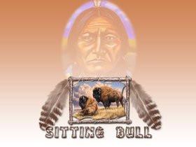Photo Sitting Bulljpg