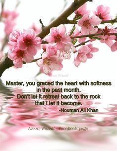 dua nouman ali khan more spring blossom cherries blossoms pink flower ...