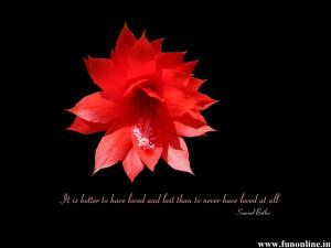 Amazing Love Quote