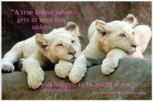 Quotes On Friendship, A True Friend Never Gets in Your Way, two lion ...