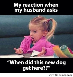 My reaction when my husband asks US Humor - Funny pictures, Quotes ...