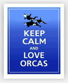 orcas... forever amazing More