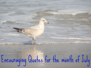 It's the start of a new month, so here are a few encouraging quotes ...