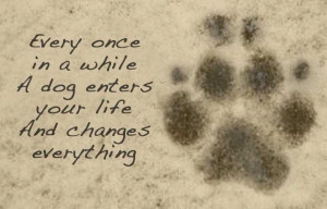Every once in a while a dog enters your life and changes everything