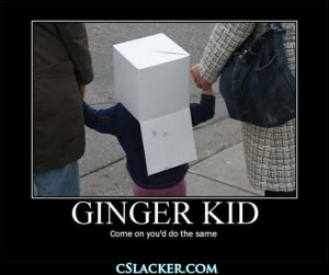 funny ginger quotes www 355nation net