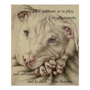 Dogs Motivate Us: Pit Bull Poster