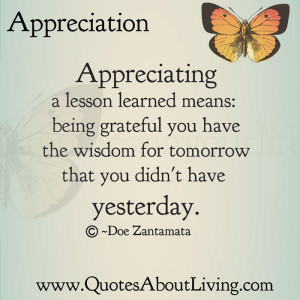 Appreciating a lesson learned means: