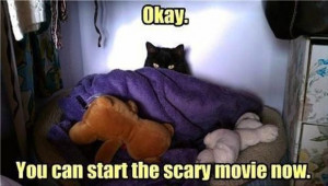Okay. You can start the scary movie now
