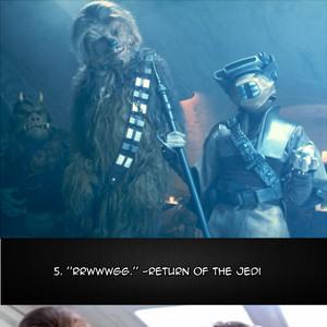Top Chewbacca Quotes
