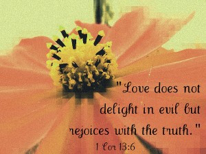 """... Not Delight In Evil But Rejoices With The Truth """" ~ Bible Quotes"""