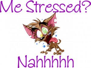 oktober 18 stressad ni är väl aldrig stressade tänkte väl det ...