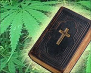 is marijuana in the bible MARIJUANA THE BIBLE