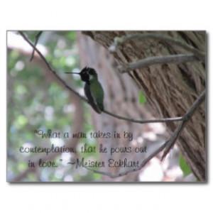 Meister Eckhart Contemplation Quote Hummingbird Postcard