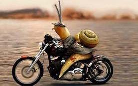 Funny Dirt Bike Jokes Motorcycle jokes
