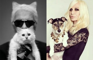 StageBuddy.com | Meet Karl Lagerfeld's Cat (& Other Famous Pets)