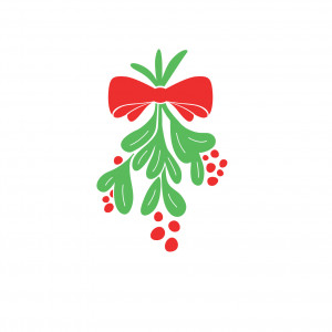 Christmas Mistletoe Quotes Christmas is coming, we've got