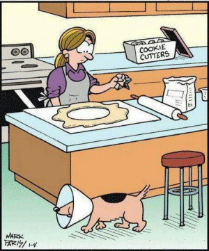 Funny Dog Cone Cookie Cutter Thief Cartoon Picture Image