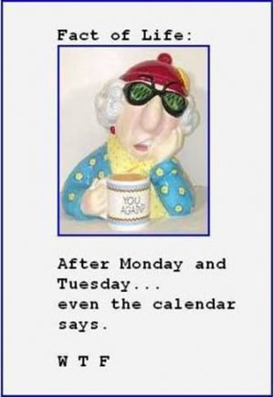 Related Pictures maxine quotes work too funny