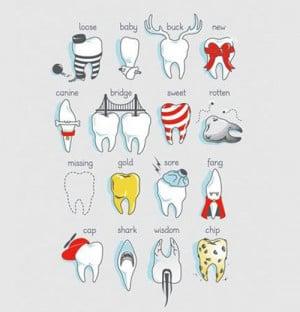 Types of teeth…