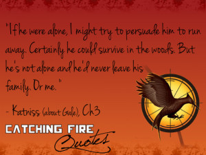 Catching Fire quotes 21-40 - the-hunger-games Fan Art
