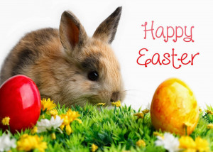 happy easter quotes 14 happy easter quotes 15 happy easter quotes 16 ...