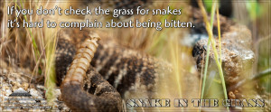 Snakes in Mythology: Serpent (symbolism):