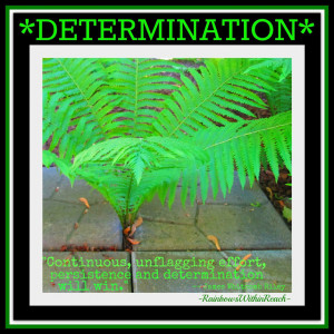 Self Determination: The Driving Force Behind Every Achievement In Life
