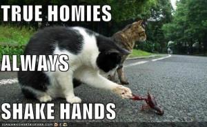 True Homies Quotes Tumblr Group of: true homies