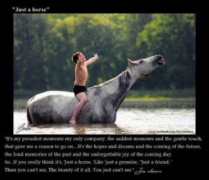 Horse Quotes Tumblr Cowgirl Attitude Picture