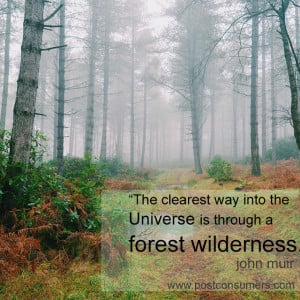 "... way into the Universe is through a forest wilderness."" John Muir"