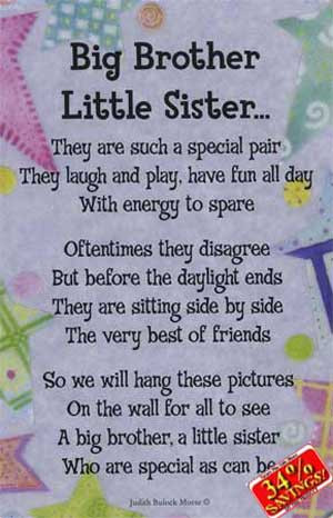 Happy Birthday From Big Brother Funny Sister Quotes ...