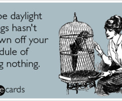 daylight savings quotes Reviews you can really sink your teeth into…