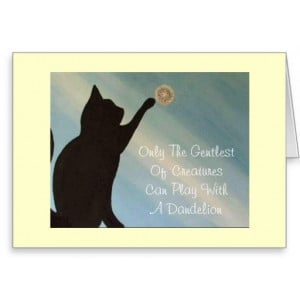 pet_sympathy_card_cat_kinky_friedman_quote ...