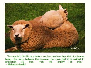 File Name : animal%2Bquotes%2BGandhi.jpg Resolution : 960 x 720 pixel ...