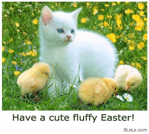 daily quotes, funny cartoons, funny easter 2013, funny kids, funny ...