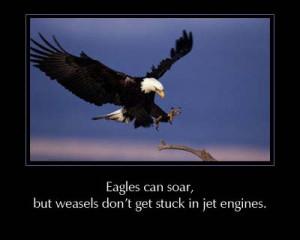 eagle sayings