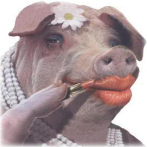 pig on lipstick quote