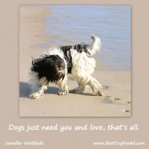 dog companionship quotes