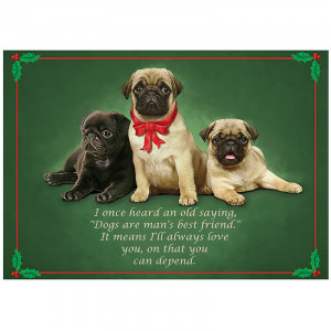 best christmas quotes for cards biblical christmas quotes for cards ...