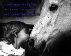 Horse Quotes Tumblr Picture