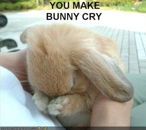 ... .net/images/2011/06/16/funny-pictures-bunny-sad_130822884269.jpg