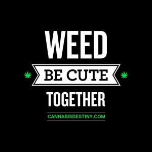 weed #marijuana #cannabis #quote #type #love #420Damn High, Quotes ...