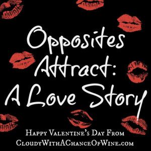 Opposites Attract - A Love Story