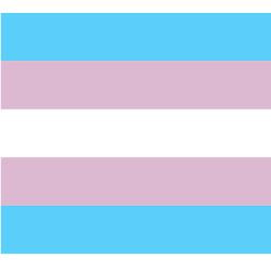 transgender_pride_patches.jpg?height=250&width=250&padToSquare=true