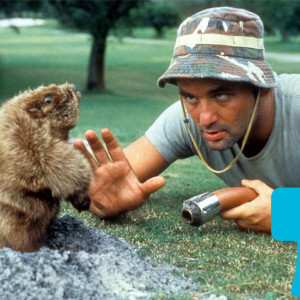 Can You Guess Caddyshack Lines From Just a GIF? -- Vulture