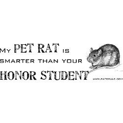 smarter_pet_rat_bumper_bumper_sticker.jpg?height=250&width=250 ...