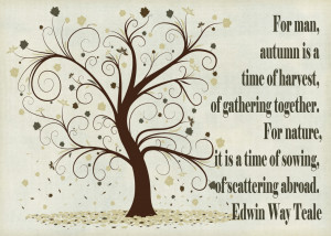 just love this quote as you know autumn don t call it fall is my ...