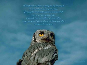quotes about wisdom and owls