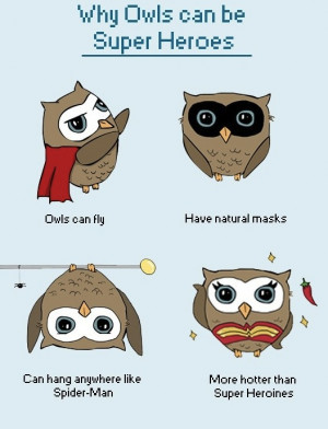 Funny Owl Sayings and Quotes
