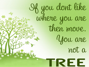 Environment Quotes and Sayings